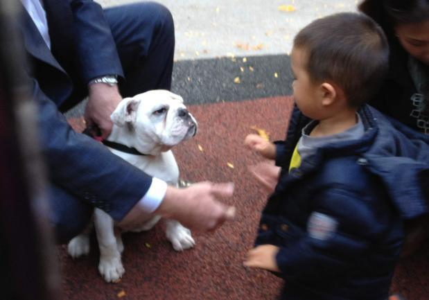 HKLC child with Georgetown University Mascot Jack the Bulldog.